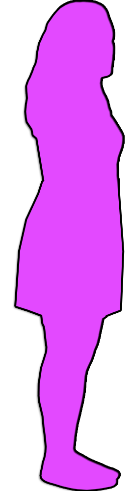 Feminicidios 2010