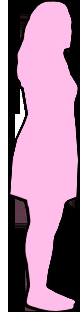 Feminicidios 2016